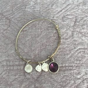 Alex and Ani amethyst February silver bracelet